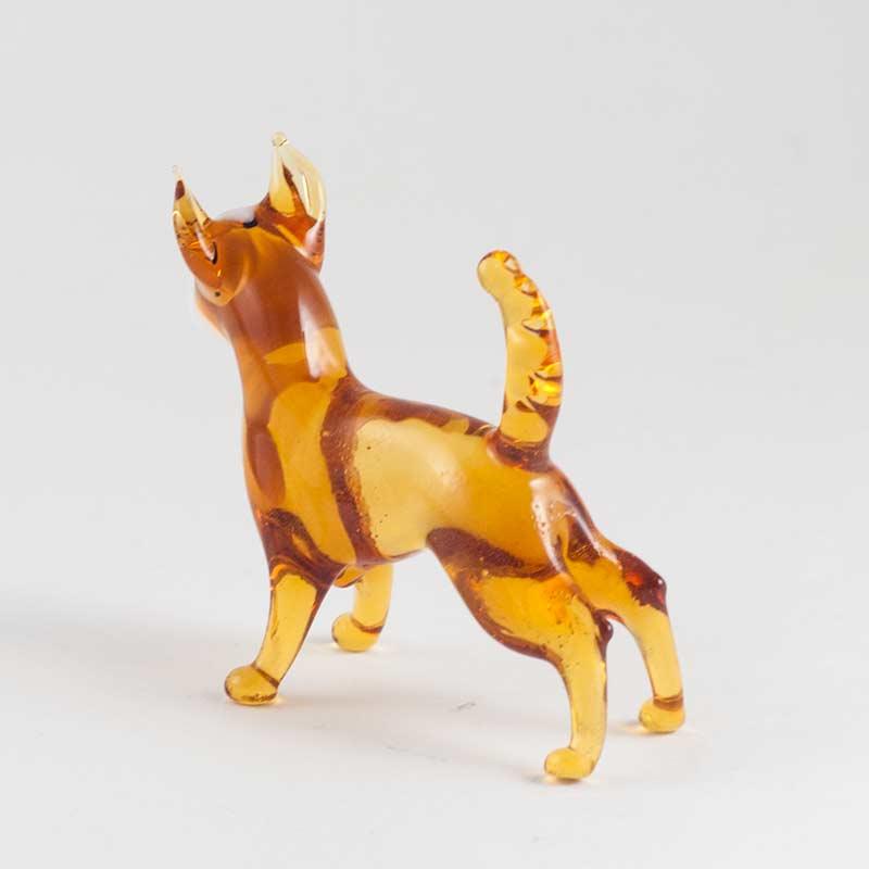 Собачка чихуа, фото 2