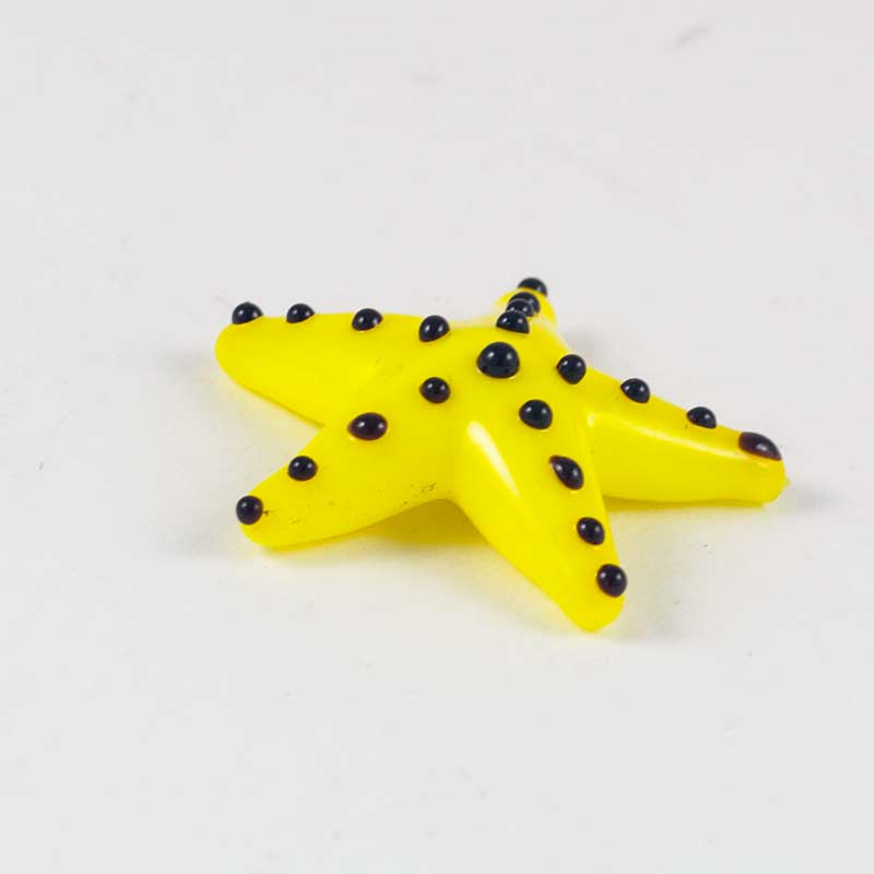 Морская звезда желтая, фото 1