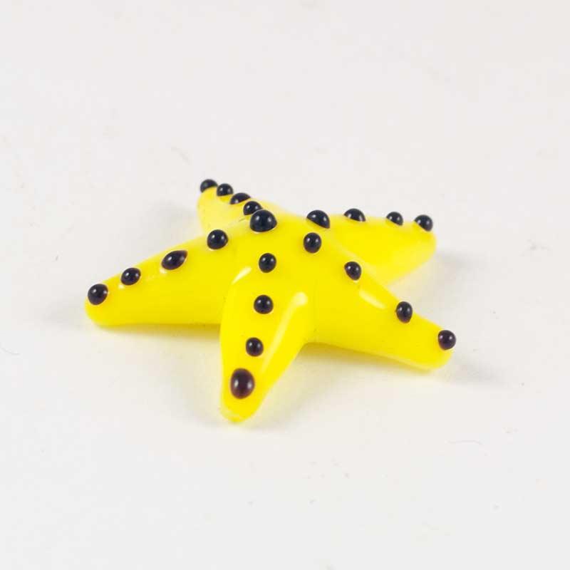 Морская звезда желтая, фото 3