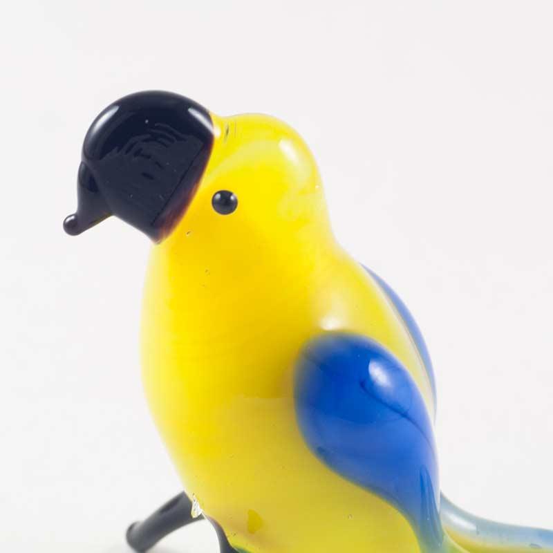 Желтый попугай Птицы