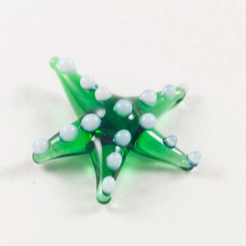 Морская звезда зеленая Миниатюрные
