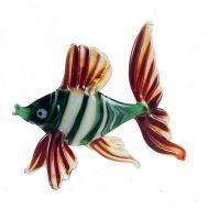 Рыба окунь, фото 1