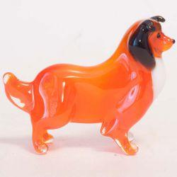 Собака Колли, фото 1