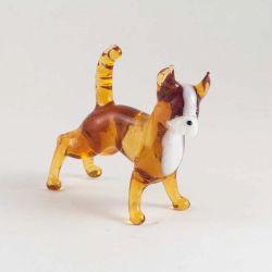 Собачка чихуа, фото 1